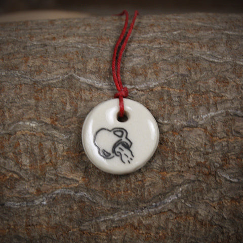 zodiac pendant: Aquarius (January 21-February 19)