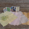 plant-dyed fabric bundle: organic cotton/linen - soft colors