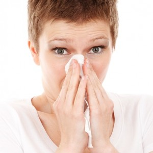 allergies down comforter itchy nose