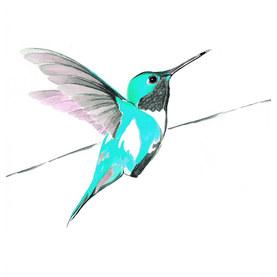 Hummingbird in blue limited edition print by Anna Jacobs