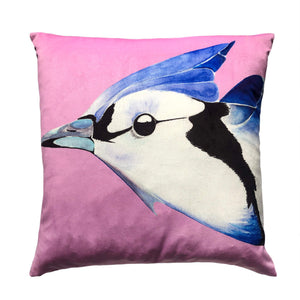 Blue Jay on Orchid velvet cushion