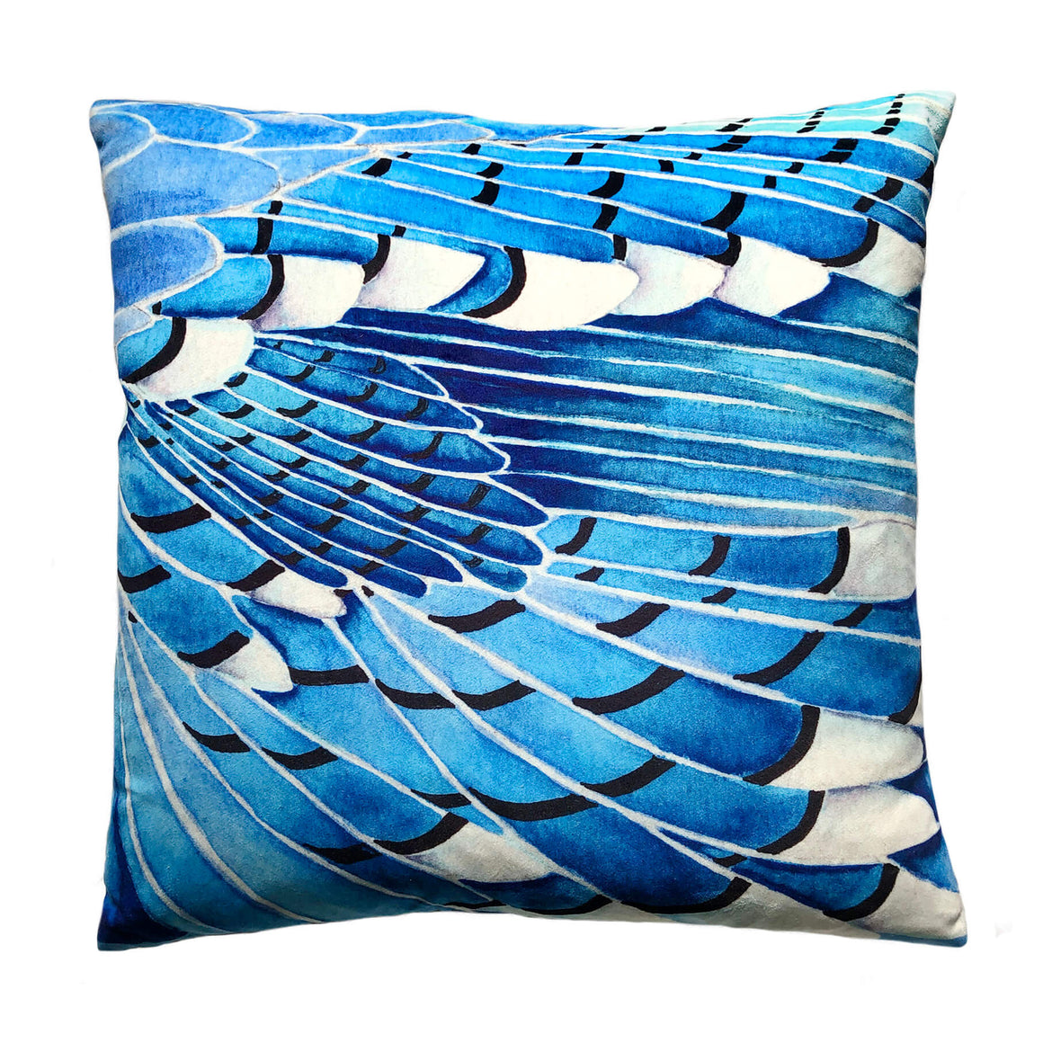 Blue Jay wing velvet cushion by Anna Jacobs