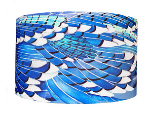 Blue Jay Wing lampshade