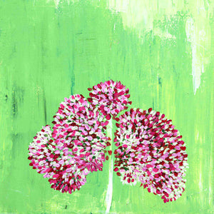 Blushing Sedum<br/>greeting card