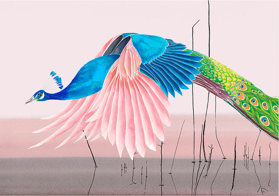 Flying Peacock<br />greeting card