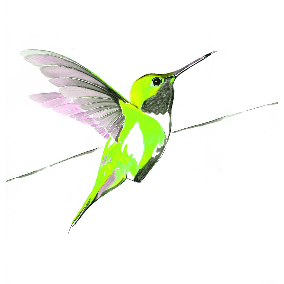 Hummer in Green<Br>Print