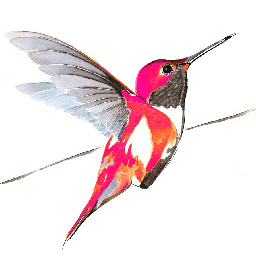 Hummer in pink<br/>greeting card