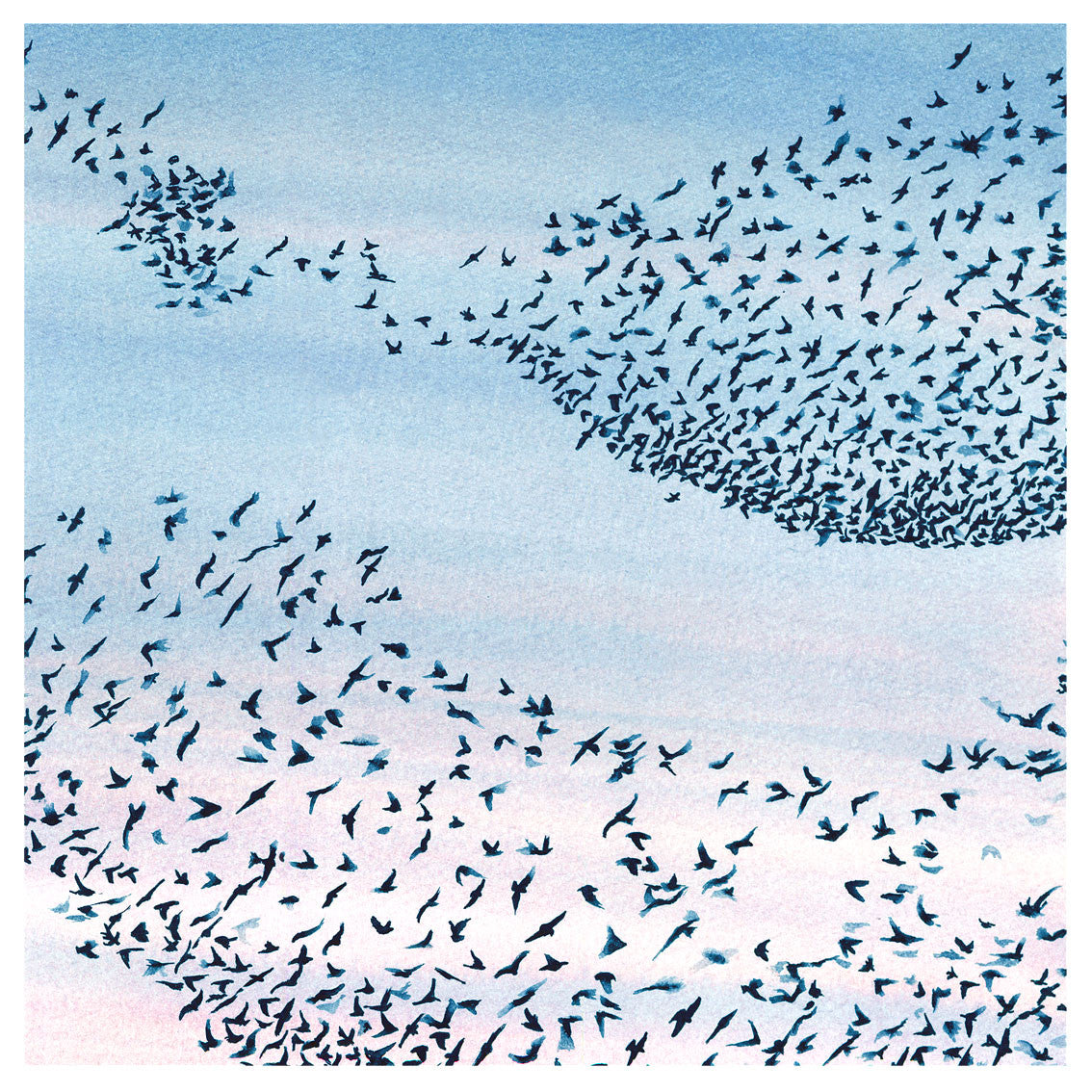 Murmuration<br />greeting card