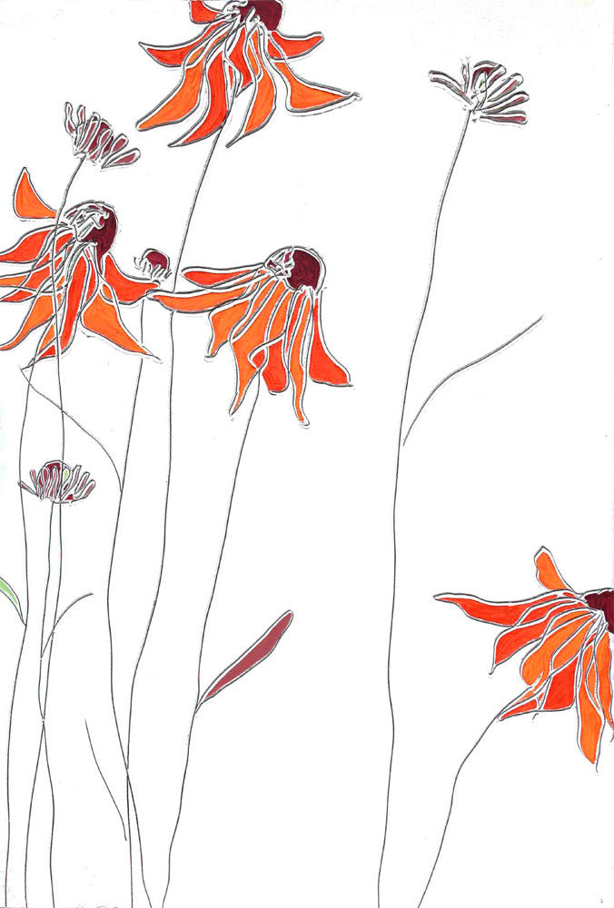 Red Echinacea<br/>greeting card