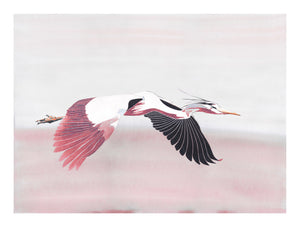 Heron in Rose<br />print
