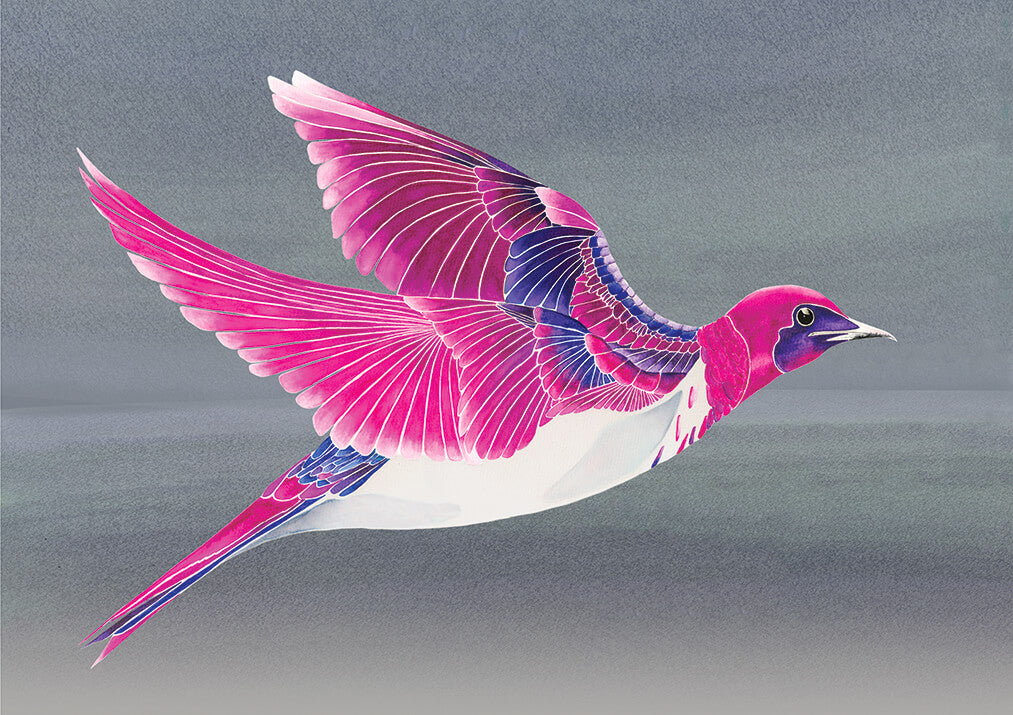 Violet Backed Starling<br />greeting card
