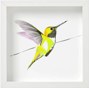 Hummer in Yellow<br>print