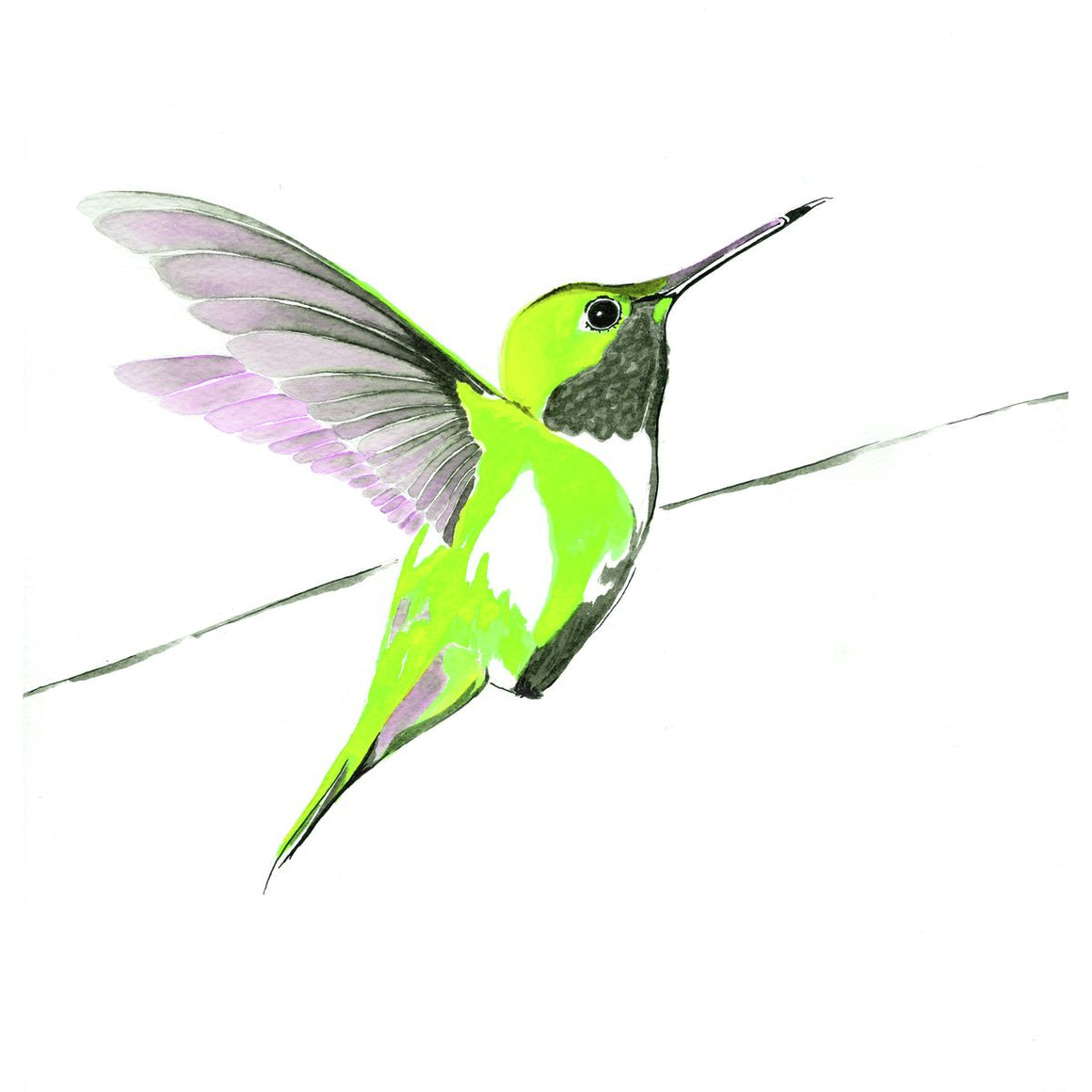 Hummer in Green<br/>print