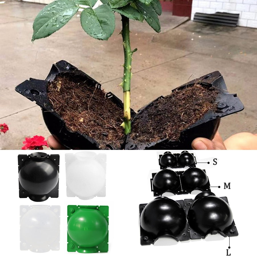 5PCS Plant Root Growing Box High Pressure Gardening Plant Root Ball Breeding Case for Garden Grafting Rooting Grow Box