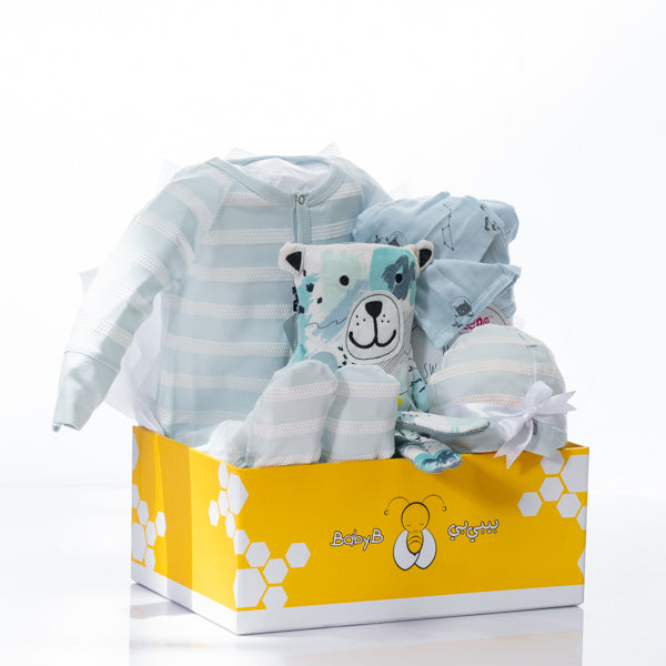 Blue Bubble Stripe Gift Basket