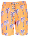 Sunset Moorings Palm Rashguard & Boardie Shorts