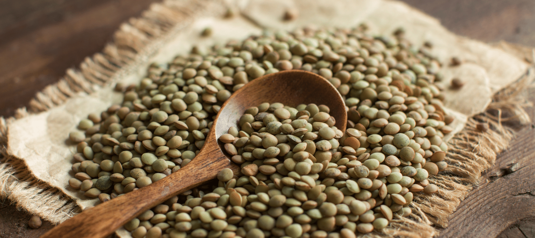 Spoon Scooping Wholesome Green Lentils