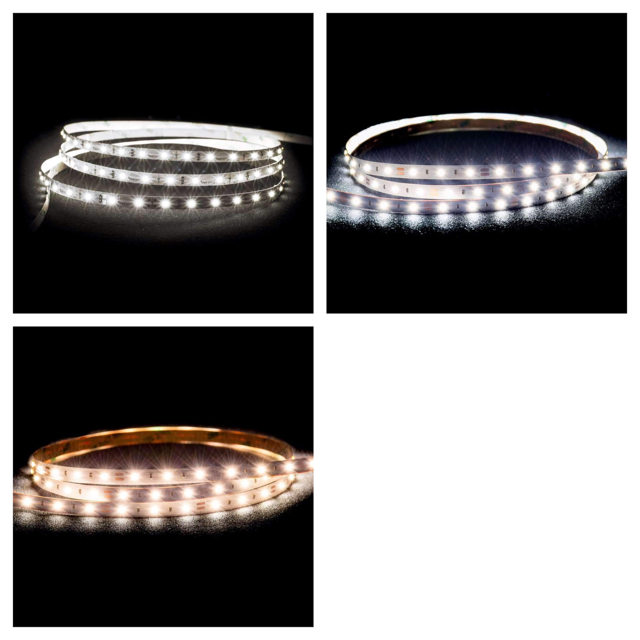 LED Strips 50m Rolls LED Strip - IP20