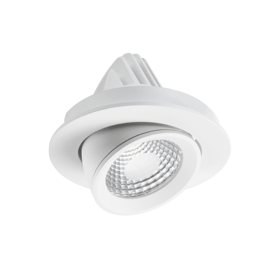 Recessed Apex Adjustable Down Light