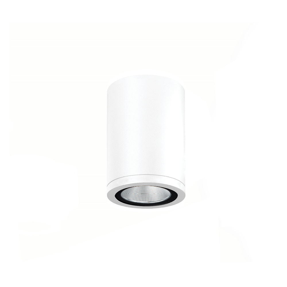 Surface Mounted Athena Surface Mounted Downlight