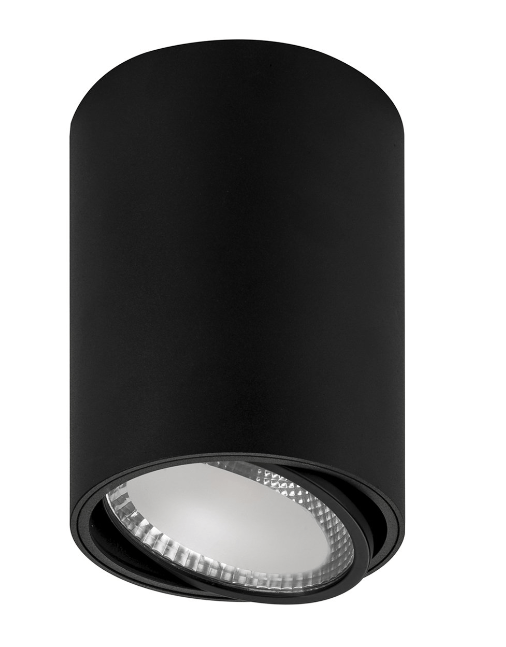 Surface Mounted Nella Adjustable Surface Mounted Downlight