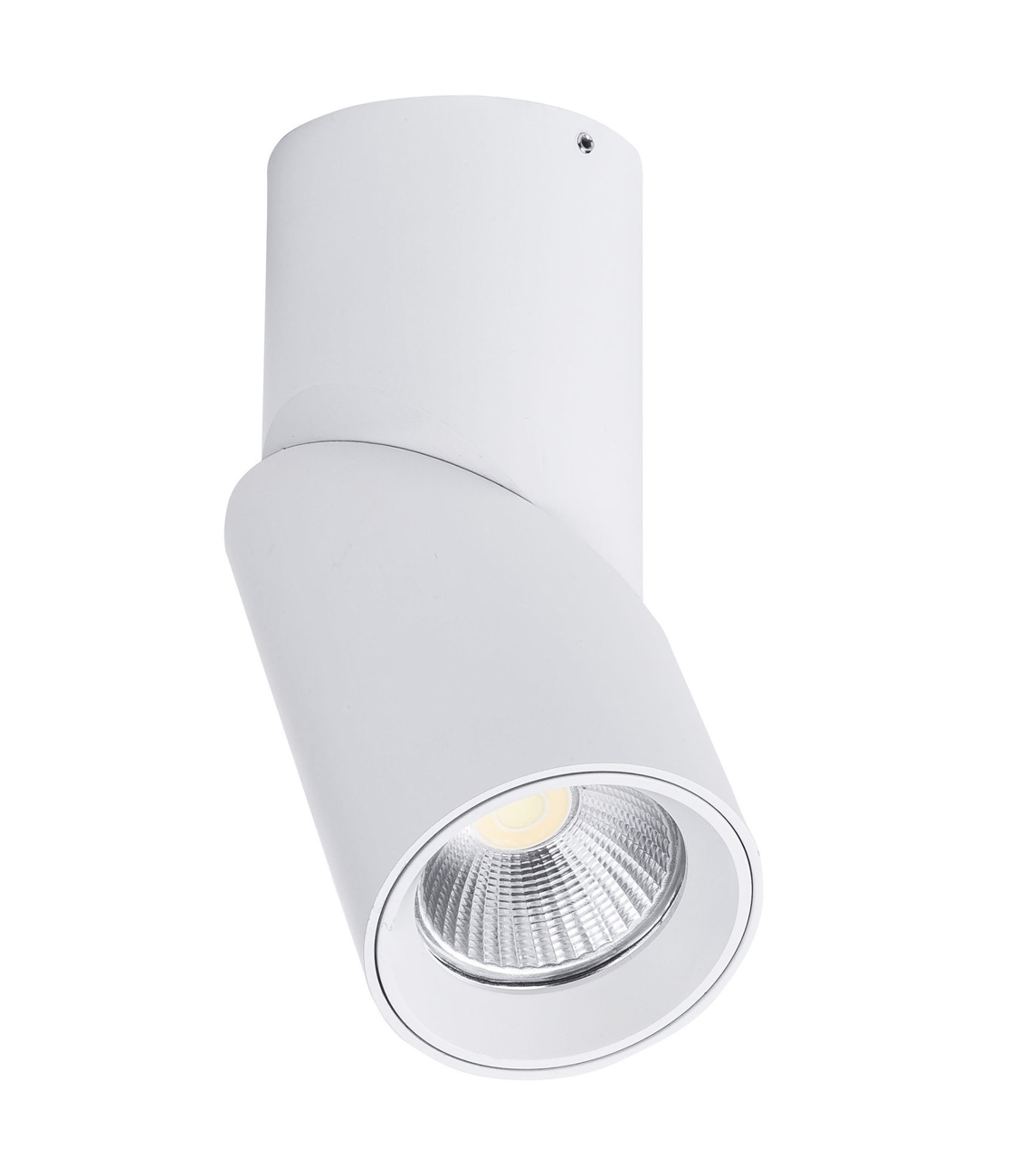 Surface Mounted Nella Rotatable Surface Mounted Downlight