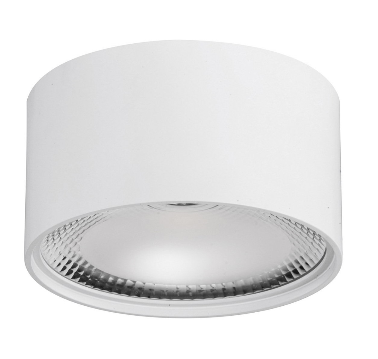 Surface Mounted Nella Surface Mounted Downlight
