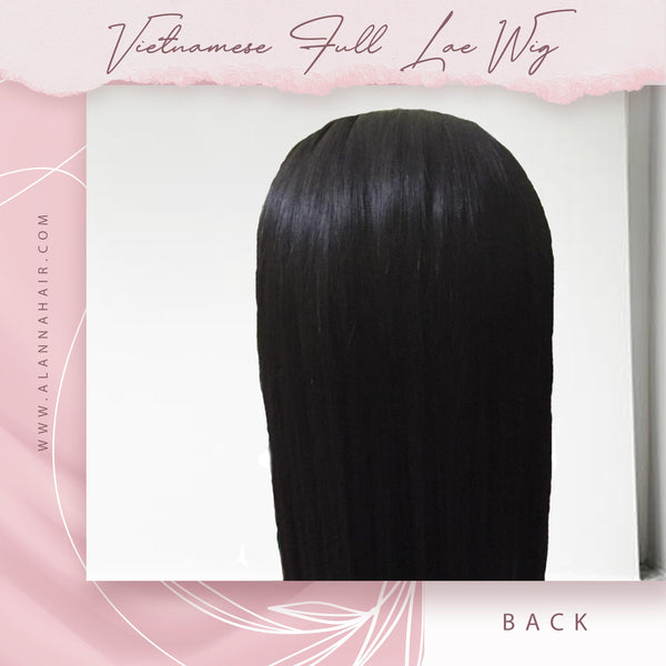Raw Vietnamese Silky Straight Full Lace Wig