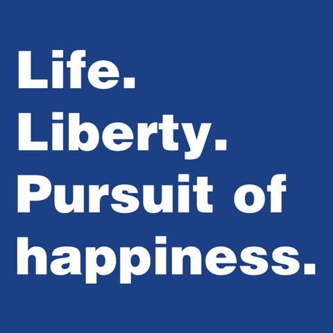 Life Liberty Pursuit of Happiness T-Shirt