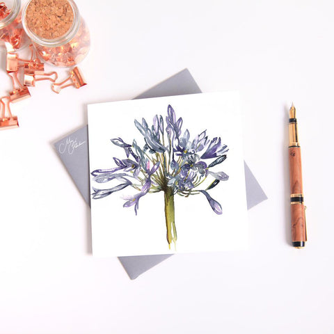 Agapanthus watercolour by Meg Hawkins