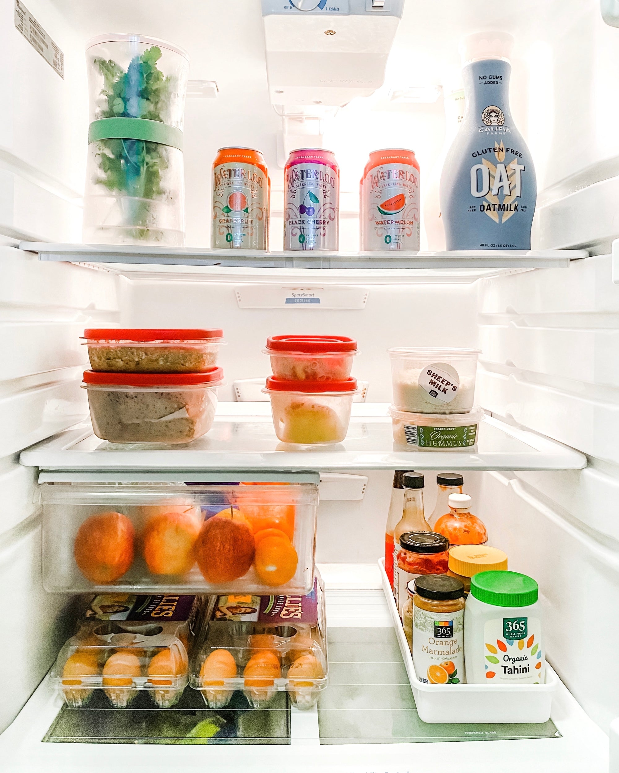 How to Maintain an Organized Refrigerator - tidyspot Blog Post