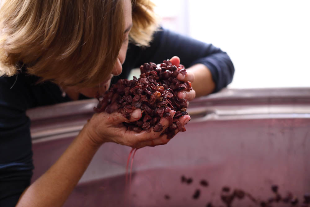 Smelling grapes