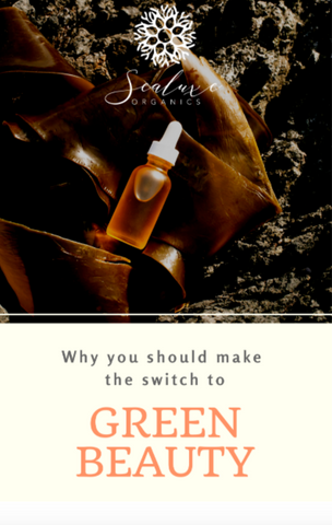 clean beauty products and why you should switch
