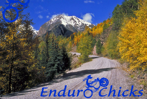 EnduroChicks.com