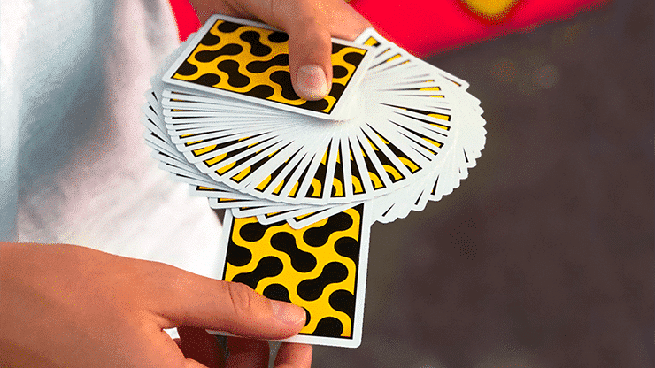 Cheetah Playing Cards by Gemini Alt2