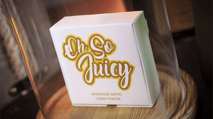 Oh so Juicy Gimmick by Brandon David and Chris Turchi Galerie