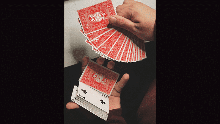 Slow Hands Playing Cards Alt4