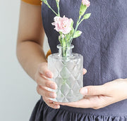 Simple Transparent Glass Small Vase Nordic Decoration Living Room Flower Home Vases Aromatherapy Bottle