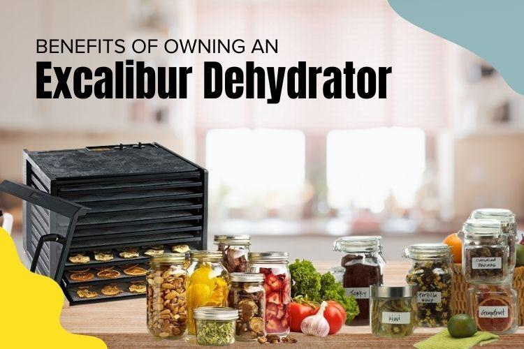 Benefits of owning an Excalibur Food Dehydrator