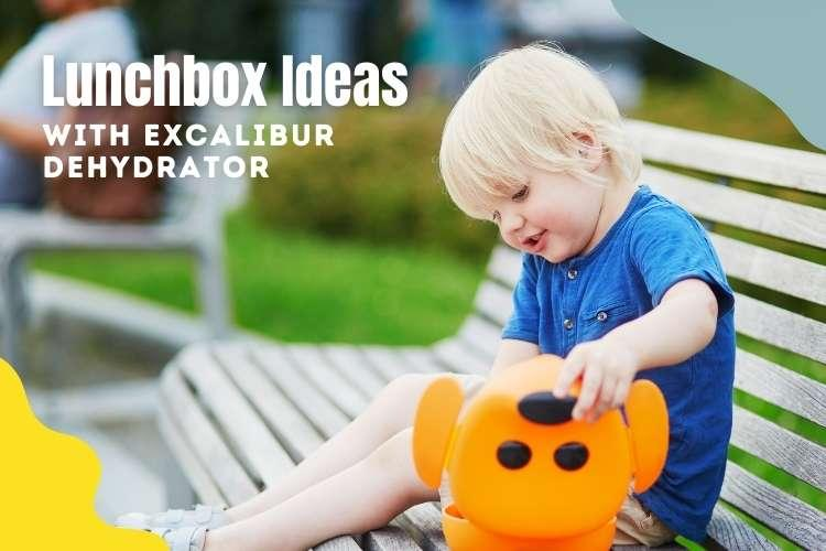 Lunchbox ideas with Excalibur Dehydrators