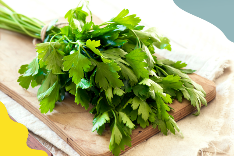 Parsley for juicing