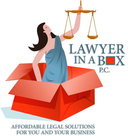 Lawyer in a Box(TM) Choosing the Best Business Type for You