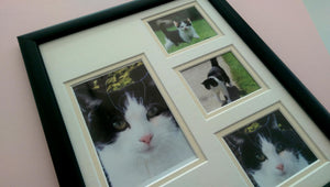 Personlaised Pet Photo Frame 12 x 10 Portrait