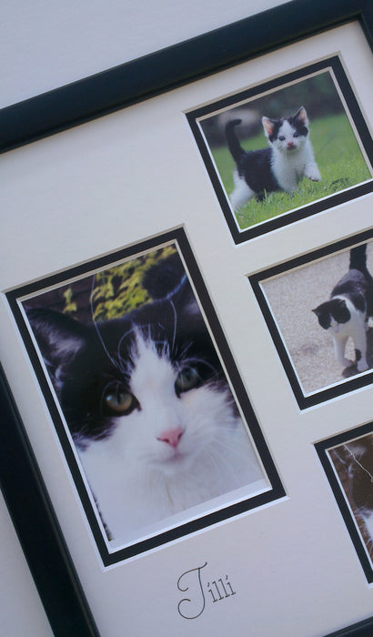 Personalised Pet Photo Frame 12 x 10 Portrait