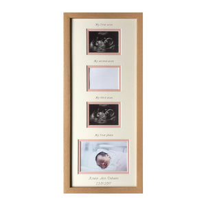 Scan Mount & Frame