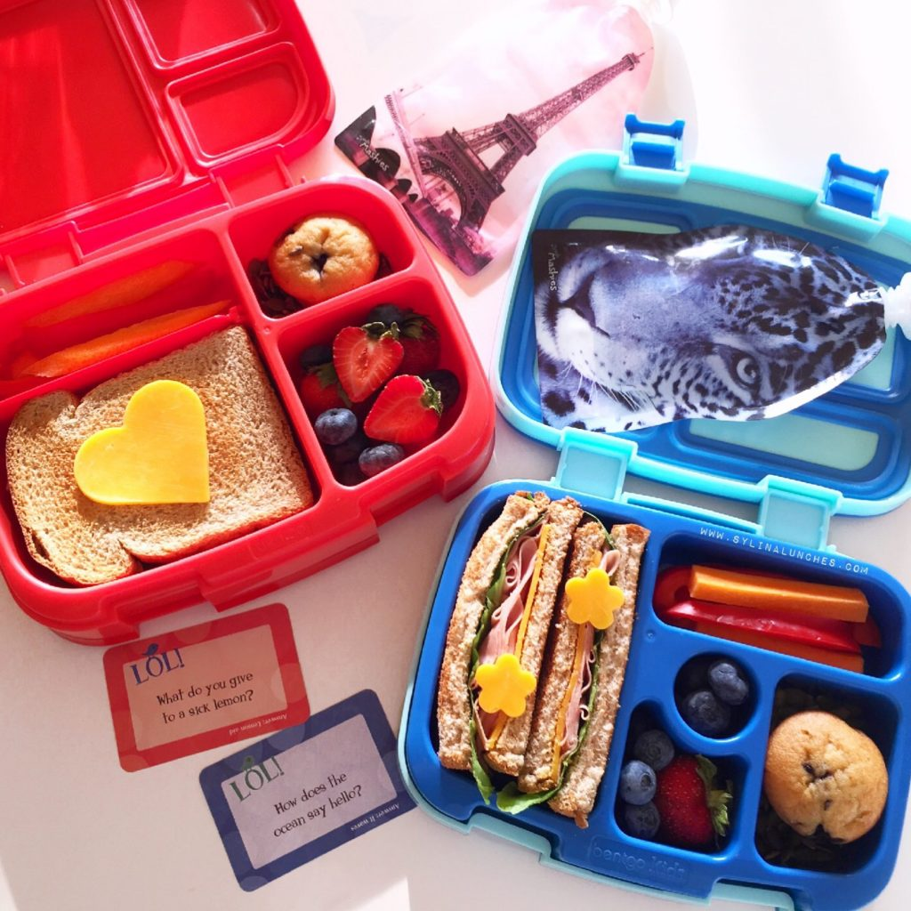 Bentgo Lunch Box Comparison