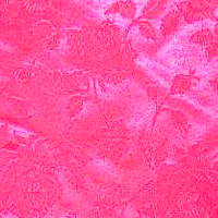Neon Pink - Floral Satin