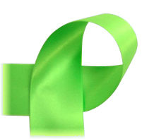 "Lime Green - 7/8"" Ribbon"