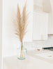 Pampas Grass Decor in Gilbert AZ