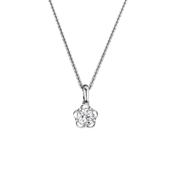 Merii Forget me not : flower Sparkly Necklace Sterling silver and Rhodium Plated